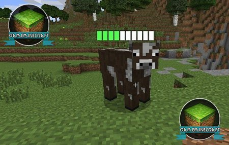 [1.7.4] Мод Entipy - HP bars for mobs
