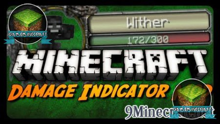 Damage Indicators [1.7.10]