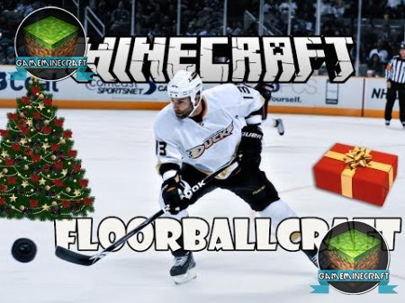 FloorBallCraft [1.8.1]